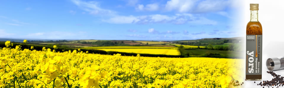Yorkshire Rapeseed Oil Manufacturer